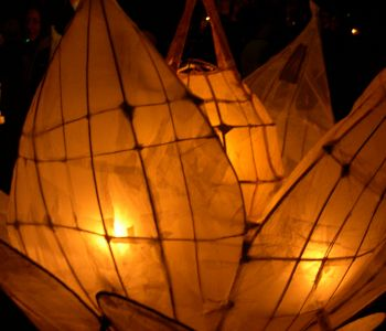A Lilly Lantern For a Lantern Festival
